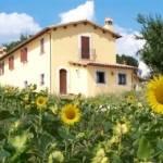 il Poggio del Sole - Az. Agricola Bassetti - SanGemini TR